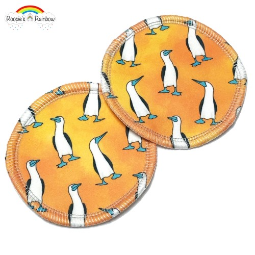 Blue Footed Boobies Breast Pads